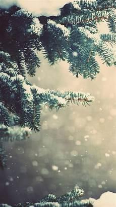 Warm Winter Iphone Wallpaper by Wallpaper Iphone Winter Wallpaper Iphone