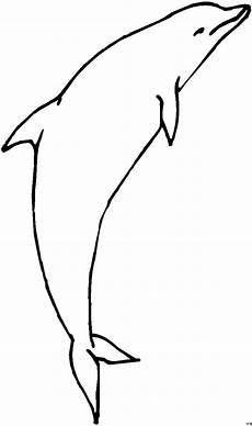 Malvorlagen Delfin T Delphin Springt Ausmalbild Malvorlage Comics