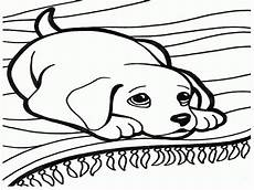 Hunde Malvorlagen And Coloring Pages