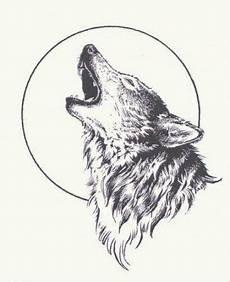 pleine lune loup hurlant de 30 id 233 es
