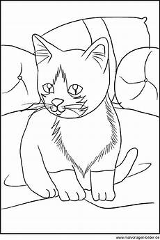 Malvorlagen Katzenbabys Kostenlos Malvorlage Katze Kostenlose Ausmalbilder Zum Ausdrucken