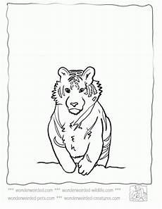 Malvorlagen Wolf Pdf Malvorlagen Wolf X Reader Zeichnen Und F 228 Rben