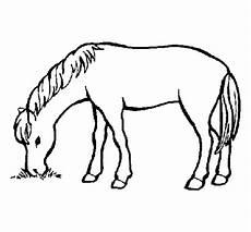 Einfache Malvorlage Pferd Malvorlagen Pferd