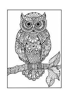 Ausmalbilder Muster Eule Bildergebnis F 252 R Zentangle Muster Eule Eule