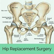 total hip replacement pt hip replacement joint replacement hip fracture