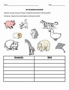 worksheets on domestic animals for grade 1 14267 domestic animals vs animals by reda tpt