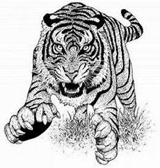 Malvorlagen Tiger Cake Endangered Animal Mammals Coloring Pages Free
