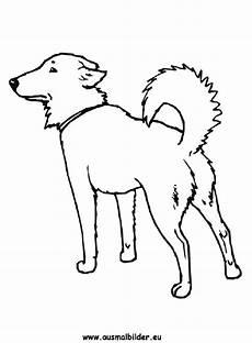 Ausmalbilder Hunde Pudel Ausmalbild Hund Zum Ausdrucken
