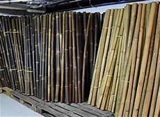 bambusrohre bambusstangen bambus f 252 r dekoration und