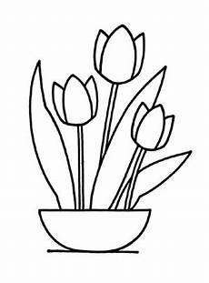 ausmalbild tulpen zum ausdrucken und ausmalen
