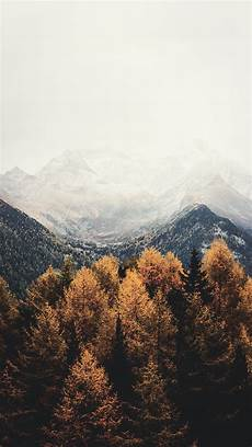 Aesthetic Fall Backgrounds Iphone