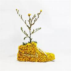 pub co de fiori organic nikes made from flowers and bark
