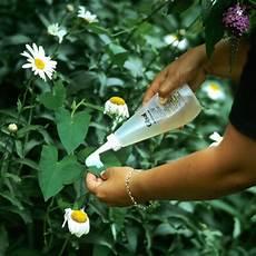 desherbant liseron bio lutter contre le liseron jardinage