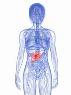 rippenfellentzündung schmerzen beim liegen bauchspeicheldr 252 senkrebs symptome erkl 228 rt