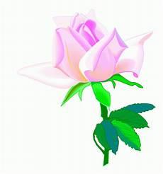 Malvorlagen Kinder Rosa Schoene Rosa Ausmalbild Malvorlage Blumen
