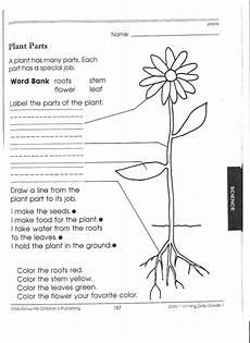 14 best images of plant worksheets for grade 1 printable plant parts of a flower worksheet