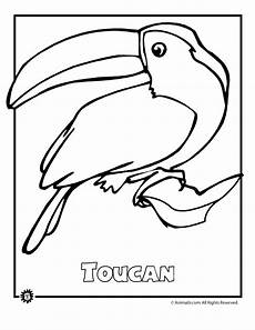 free coloring pages of animals in the rainforest 17397 endangered rainforest touca woo jr activities