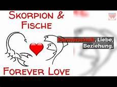 Skorpion Fische Partner Horoskop Liebe