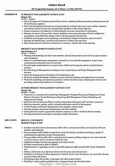 new project management consultant resume project management consultant resume sles velvet
