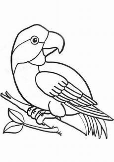 ausmalbilder v 246 gel 20 ausmalbilder tiere
