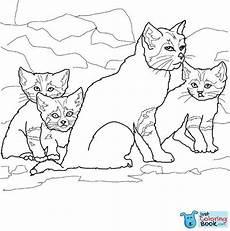 Katzen Malvorlagen Instagram Ausmalbilder Ausdrucken Sandkatze K 228 Tzchen Coloring