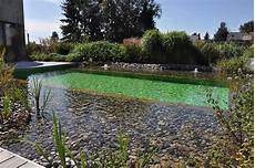 naturelle pour piscine les piscines naturelles id 233 es piscine