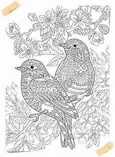 mandala malvorlagen vogel tippsvorlage info