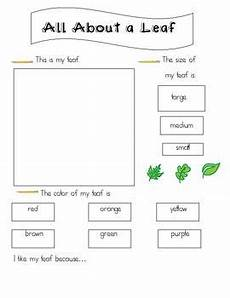 science worksheets leaves 12281 14 best fall projects teaching images on fall season teaching science and