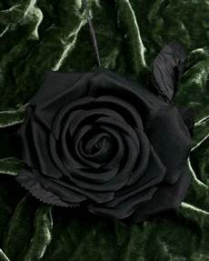 flower homes black