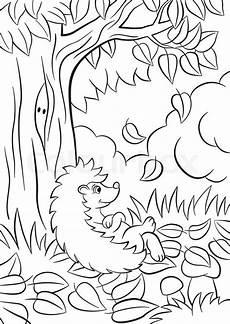 hedgehog drawing at getdrawings free for