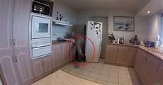 kühlschrank sauber machen sie wollte nur hinter ihrem k 252 hlschrank sauber machen