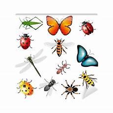 Malvorlagen Insekten Um Fototapete Collection Of Vector Insekten Bugs Und