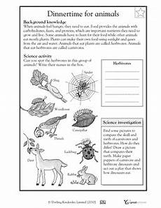 4th grade science worksheets with answer key 12470 4th grade science resources from greatschools org fourth grade science 4th grade science