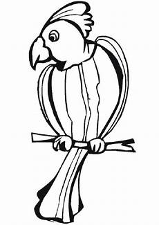 Ausmalbilder Tiere Papagei Ausmalbilder Papagei 05 Ausmalbilder Tiere