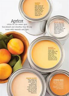 better homes and gardens apricot paint color palettes