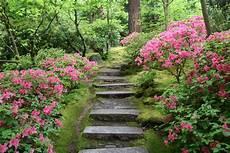 a walk through the natural garden portland garden