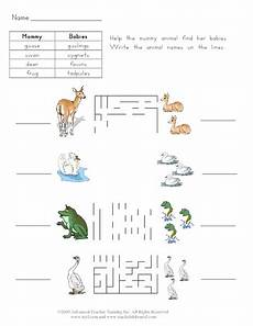 mother and baby animals 3 worksheet for 1st 2nd grade lesson planet