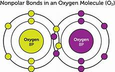 what is the difference between polar and non polar molecules quora