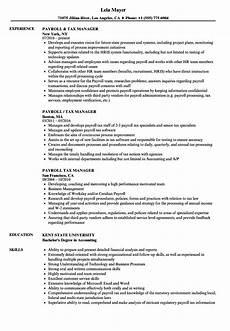 payroll director resume sle july 2020