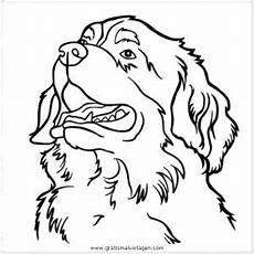Ausmalbilder Schleich Hunde Berner Sennenhund Gratis Malvorlage In Hunde Tiere Ausmalen