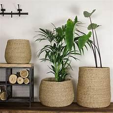 grand panier de rangement ou pot pour plantes fait d