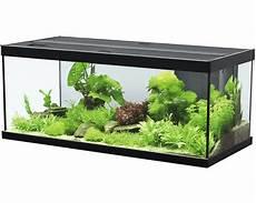 aquarium aquatlantis style 100x40 cm mit led beleuchtung