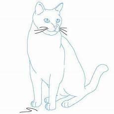 Malvorlage Sitzende Katze Katze Sitzend Malvorlage Tiffanylovesbooks