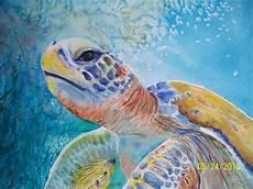 passport to creativity the galapagos green sea turtle