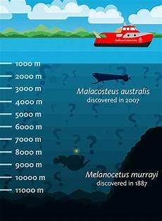 better regulations needed for deep sea biology