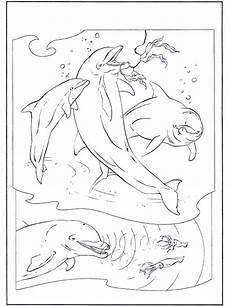 delfine 2 malvorlagen delfine und wassertiere