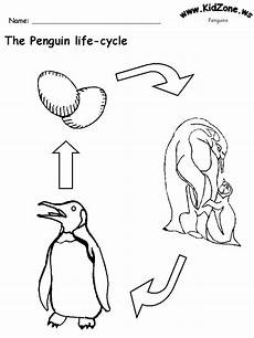 animal cycle worksheets 13938 worksheets literacy ideas penguins words and animals