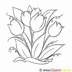 Blumen Malvorlagen Kostenlos Zum Ausdrucken Xl Ausmalbilder Fr 252 Hlingsblumen Carsmalvorlage Store