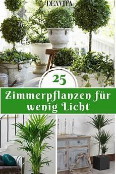 Die Wunderbare Atmosph 228 Re Die Die Zimmerpflanzen Schaffen