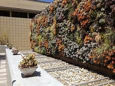 how to make a vertical garden guide tips ideas